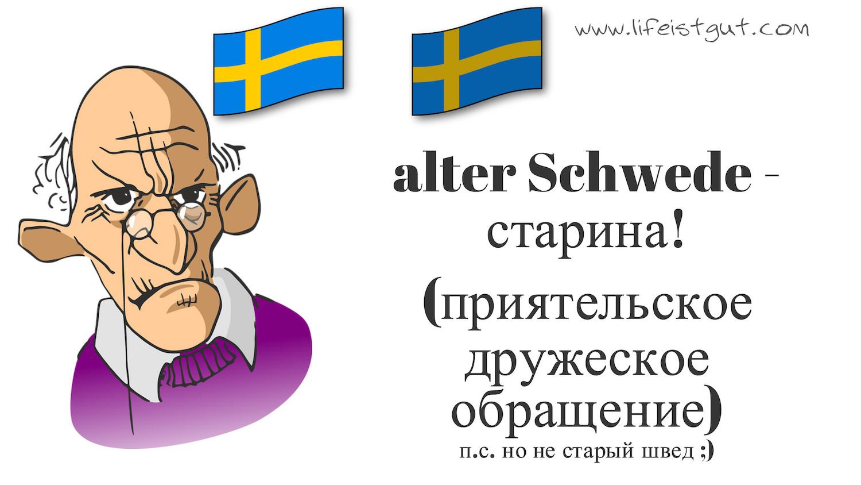 alter Schwede старина Немецкие фразеологизмы с переводом и примерами 30 штук (B2, C1)!