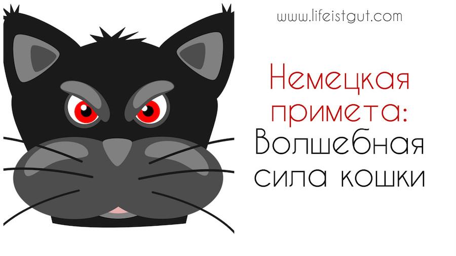 Волшебная сила кошки Немецкие приметы: Роль примет и суеверий в жизни немца