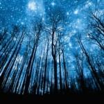 Иоганн Вольфганг Гёте — Прекрасная Ночь