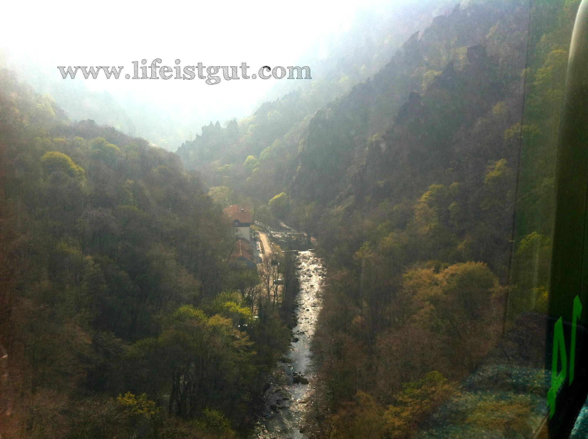 Национальный парк Гарц тале