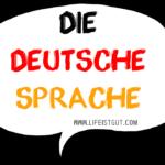 Германия Интересные Факты: 10 Интересных и неординарных фактов о жизни в Германии